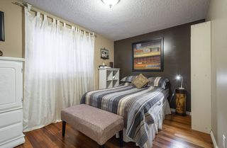 Photo 20: 15219 43 Avenue in Edmonton: Zone 14 House for sale : MLS®# E4200494