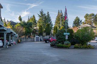 "Photo 15: 311 5780 TRAIL Avenue in Sechelt: Sechelt District Condo for sale in ""East Wind"" (Sunshine Coast)  : MLS®# R2525337"