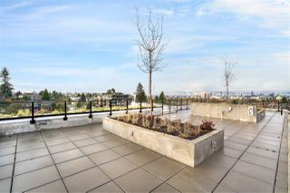 """Photo 19: 302 528 W KING EDWARD Avenue in Vancouver: South Cambie Condo for sale in """"CAMBIE & KING EDWARD"""" (Vancouver West)  : MLS®# R2527649"""