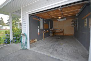 Photo 4: 20180 Wanstead Street in Maple Ridge: Southwest Maple Ridge House for lease