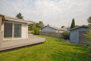 Photo 11: 20180 Wanstead Street in Maple Ridge: Southwest Maple Ridge House for lease