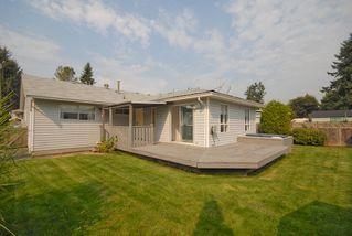 Photo 14: 20180 Wanstead Street in Maple Ridge: Southwest Maple Ridge House for lease