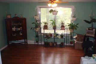 Photo 5: 612 James Street in Beaverton: House (Bungalow-Raised) for sale (N24: BEAVERTON)  : MLS®# N1246105