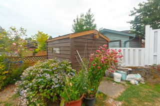 Photo 26: 825 Cameo Street in VICTORIA: SE High Quadra Single Family Detached for sale (Saanich East)  : MLS®# 414958