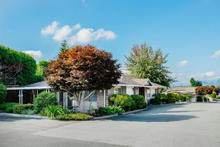 """Photo 24: 49 22308 124 Avenue in Maple Ridge: West Central Townhouse for sale in """"BRANDY WYND ESTATES"""" : MLS®# R2494203"""