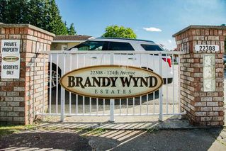 """Photo 25: 49 22308 124 Avenue in Maple Ridge: West Central Townhouse for sale in """"BRANDY WYND ESTATES"""" : MLS®# R2494203"""