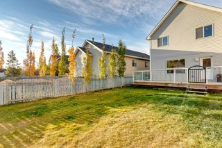 Photo 33: 83 Inverness Gardens SE in Calgary: McKenzie Towne Detached for sale : MLS®# A1041548