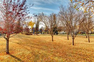 Photo 36: 83 Inverness Gardens SE in Calgary: McKenzie Towne Detached for sale : MLS®# A1041548