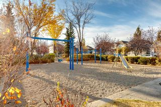 Photo 35: 83 Inverness Gardens SE in Calgary: McKenzie Towne Detached for sale : MLS®# A1041548