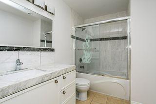 Photo 37: 12031 91 Street in Edmonton: Zone 05 House for sale : MLS®# E4218537