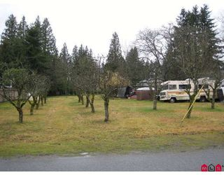 Photo 3: 19784 44TH Avenue in Langley: Brookswood Langley House for sale : MLS®# F2805998