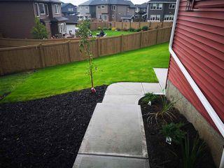 Photo 45: 6134 19A Avenue in Edmonton: Zone 53 House for sale : MLS®# E4199772