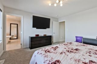 Photo 21: 6134 19A Avenue in Edmonton: Zone 53 House for sale : MLS®# E4199772