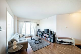 Photo 20: 501 10504 99 Avenue in Edmonton: Zone 12 Condo for sale : MLS®# E4212668