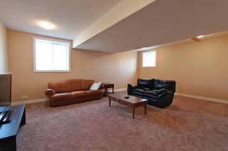 Photo 25: 101 Vista Crescent: Rural Vulcan County Detached for sale : MLS®# A1043038