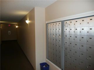 Photo 10: # 316 9938 104 ST in EDMONTON: Zone 12 Lowrise Apartment for sale (Edmonton)  : MLS®# E3248375