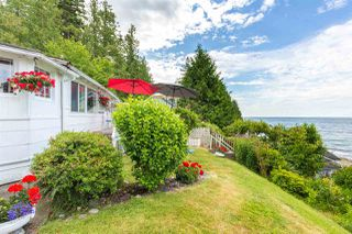 "Main Photo: 3223 BEACH Avenue: Roberts Creek House for sale in ""HEART OF ROBERTS CREEK"" (Sunshine Coast)  : MLS®# R2469113"