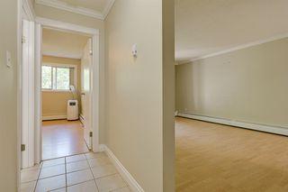 Photo 3: 302 10520 80 Avenue in Edmonton: Zone 15 Condo for sale : MLS®# E4207178
