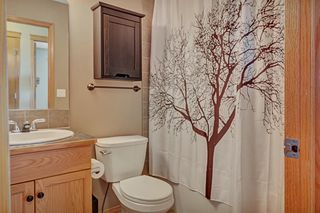 Photo 25: 154 SAGEWOOD Landing SW: Airdrie Detached for sale : MLS®# A1028498
