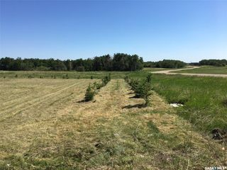 Photo 4: 117 Prairie Drive in Aberdeen: Lot/Land for sale (Aberdeen Rm No. 373)  : MLS®# SK838337