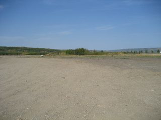 Photo 5: 8006 - 99 Avenue: Peace River Commercial Other for sale (Northern Sunnrise)  : MLS®# E1005438