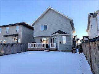 Photo 24: 6712 19 Avenue in Edmonton: Zone 53 House for sale : MLS®# E4176327