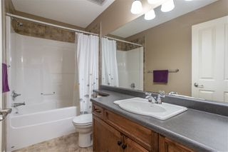 Photo 19: 6712 19 Avenue in Edmonton: Zone 53 House for sale : MLS®# E4176327