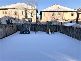Photo 25: 6712 19 Avenue in Edmonton: Zone 53 House for sale : MLS®# E4176327