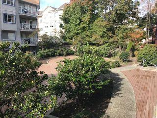 """Photo 11: 202 12101 80 Avenue in Surrey: Queen Mary Park Surrey Condo for sale in """"Surrey Town Manor"""" : MLS®# R2412281"""