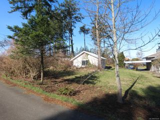 Photo 7: 292 Island Hwy in CAMPBELL RIVER: CR Campbell River Central House for sale (Campbell River)  : MLS®# 835229