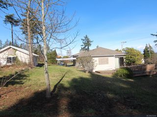 Photo 6: 292 Island Hwy in CAMPBELL RIVER: CR Campbell River Central House for sale (Campbell River)  : MLS®# 835229