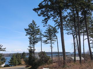 Photo 3: 292 Island Hwy in CAMPBELL RIVER: CR Campbell River Central House for sale (Campbell River)  : MLS®# 835229