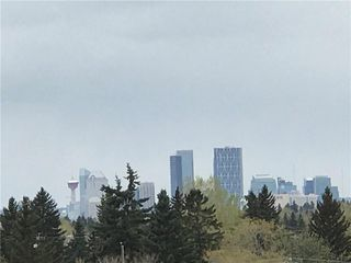 Photo 10: 401 1727 54 Street SE in Calgary: Penbrooke Meadows Apartment for sale : MLS®# A1047590