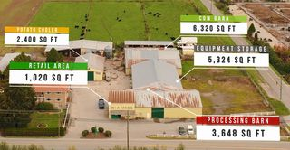 Photo 4: 17731 WESTMINSTER Highway in Richmond: East Richmond Agri-Business for sale : MLS®# C8035442