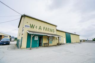 Photo 5: 17731 WESTMINSTER Highway in Richmond: East Richmond Agri-Business for sale : MLS®# C8035442