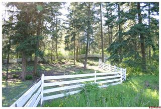 Photo 68: 4110 White Lake Road in Tappen: White Lake - Blind Bay Residential Detached for sale : MLS®# 10028859