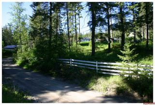 Photo 70: 4110 White Lake Road in Tappen: White Lake - Blind Bay Residential Detached for sale : MLS®# 10028859