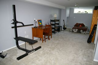 Photo 22: 10247 CRYSTAL: House for sale : MLS®# h1103096