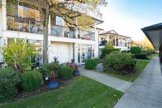 "Main Photo: 59 6467 197 Street in Langley: Willoughby Heights Townhouse for sale in ""Willow Park Estates"" : MLS®# R2418325"