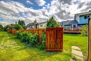 Photo 48: 93 LANGHOLM Drive: St. Albert House for sale : MLS®# E4200394