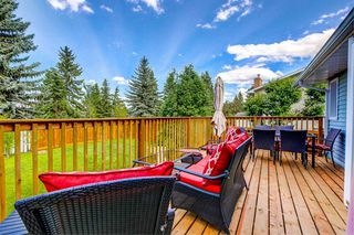 Photo 45: 93 LANGHOLM Drive: St. Albert House for sale : MLS®# E4200394
