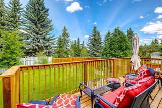 Photo 44: 93 LANGHOLM Drive: St. Albert House for sale : MLS®# E4200394
