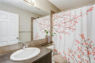 Photo 32: 147 SKYVIEW SPRINGS Gardens NE in Calgary: Skyview Ranch Detached for sale : MLS®# C4303671