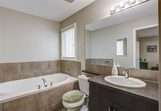 Photo 25: 147 SKYVIEW SPRINGS Gardens NE in Calgary: Skyview Ranch Detached for sale : MLS®# C4303671