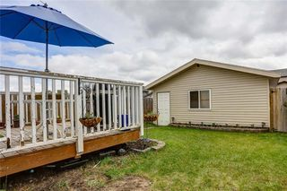 Photo 45: 147 SKYVIEW SPRINGS Gardens NE in Calgary: Skyview Ranch Detached for sale : MLS®# C4303671