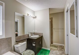 Photo 26: 147 SKYVIEW SPRINGS Gardens NE in Calgary: Skyview Ranch Detached for sale : MLS®# C4303671