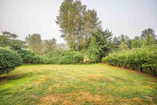 Photo 12: 13941 REICHENBACH Road in Pitt Meadows: North Meadows PI House for sale : MLS®# R2497544
