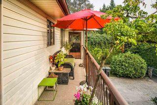 Photo 6: 13941 REICHENBACH Road in Pitt Meadows: North Meadows PI House for sale : MLS®# R2497544