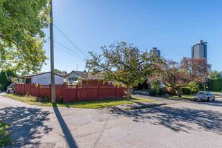 Photo 6: 4650 MIDLAWN Drive in Burnaby: Brentwood Park House for sale (Burnaby North)  : MLS®# R2504647