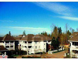 "Photo 9:  in Langley: Murrayville Condo for sale in ""Murray Green"" : MLS®# F1004106"